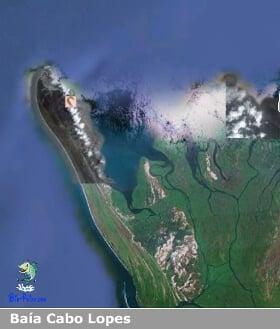 Baía dos Cabo-Lopes Kiillie
