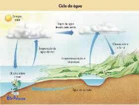 Ciclo da Água - biogeoquímico