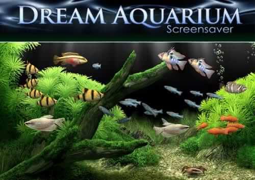 Dream Aquarium é um aquários virtual para seu PC