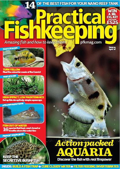 Practical Fishkeeping - 2016 - 04-Abril