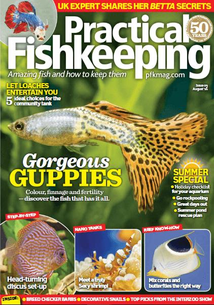 Practical Fishkeeping - 2016 - 09-Setembro