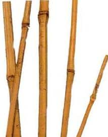 O bambu é um elemento de decoração muito utilizado nos aquários asiáticos