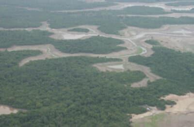 DRY AMAZON, AMAZONIA SECA