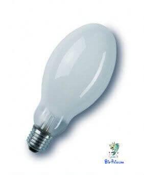 As lâmpadas HQL são utilizadas em aquário plantados