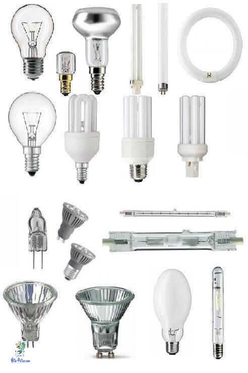 Os vários tipos de lâmpadas de aquário